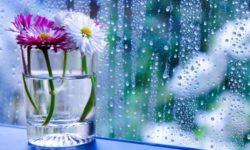 Почему окна «плачут»