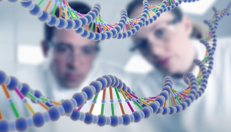 мужская генетика